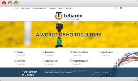 tebarex.com