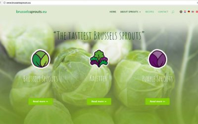 brusselssprouts.eu