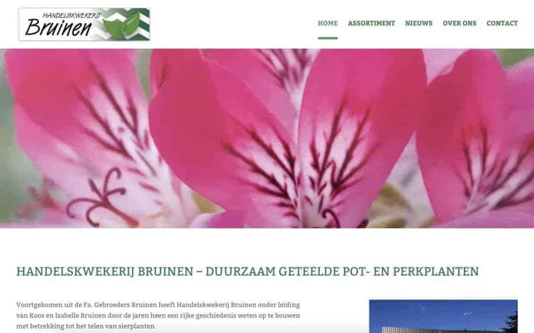 Bruinen.nl