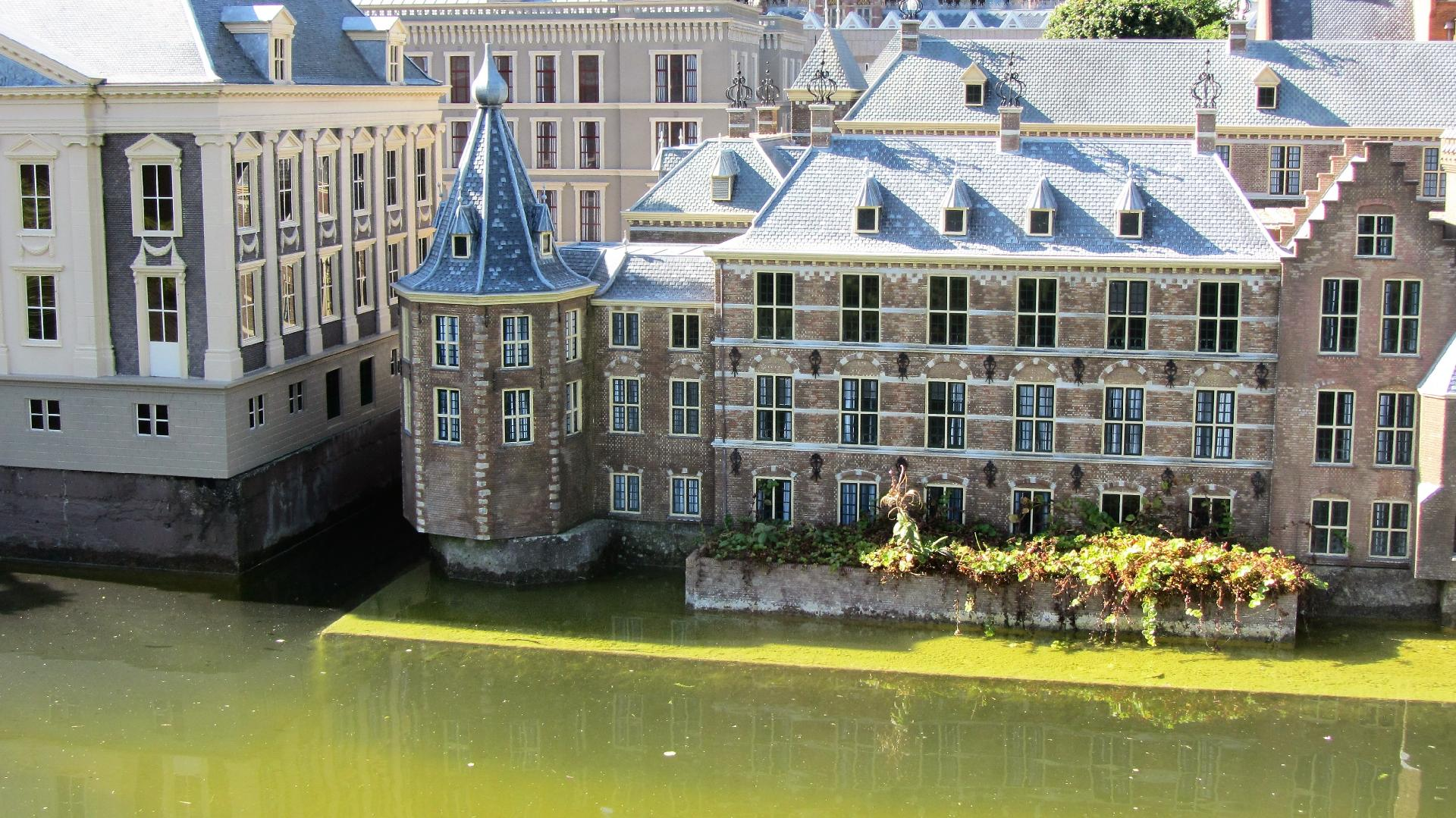 Website laten maken in Den Haag